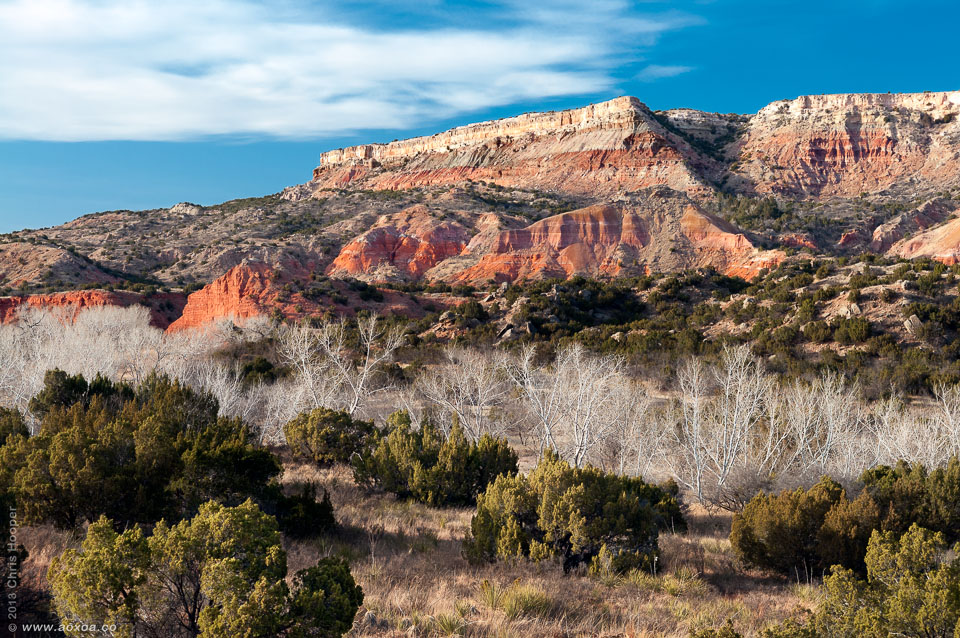 Fortress Cliffs Cottonwood Trees Palo Duro Canyon Texas