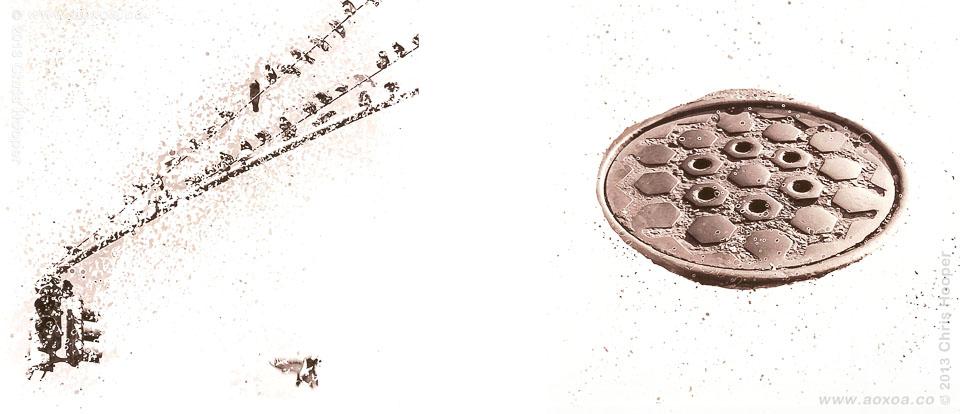 Imago Urbicum Mutavi X and XV