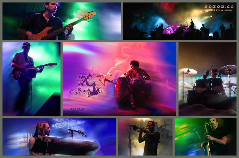 A collage of Motet concert photographs by Chris Hooper