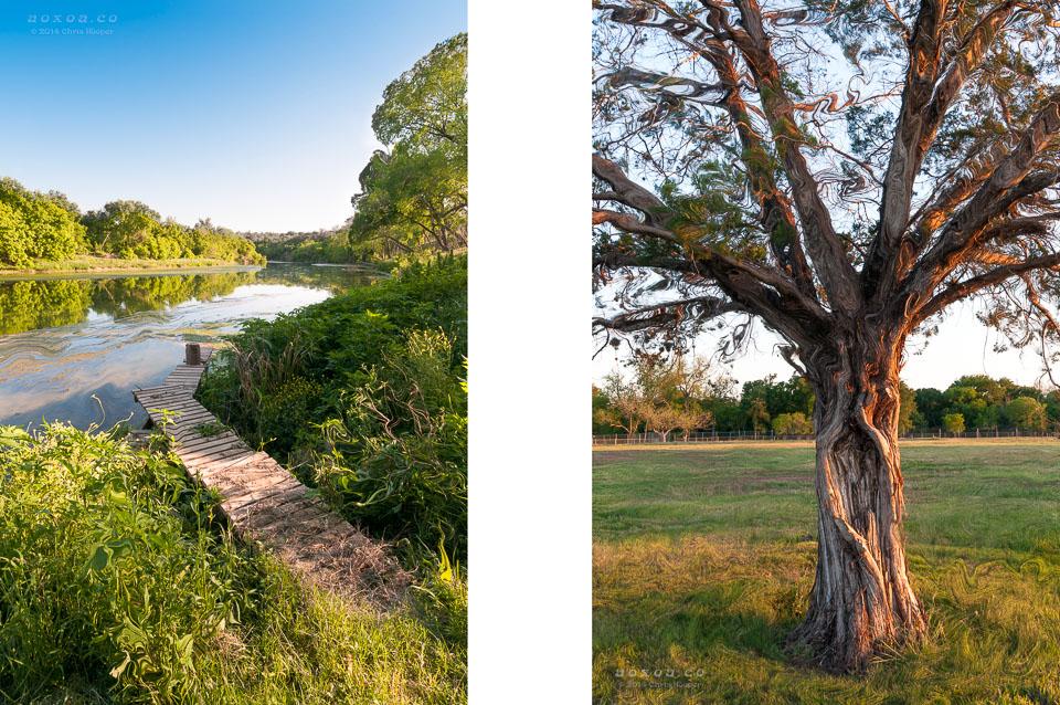carson creek ranch in austin