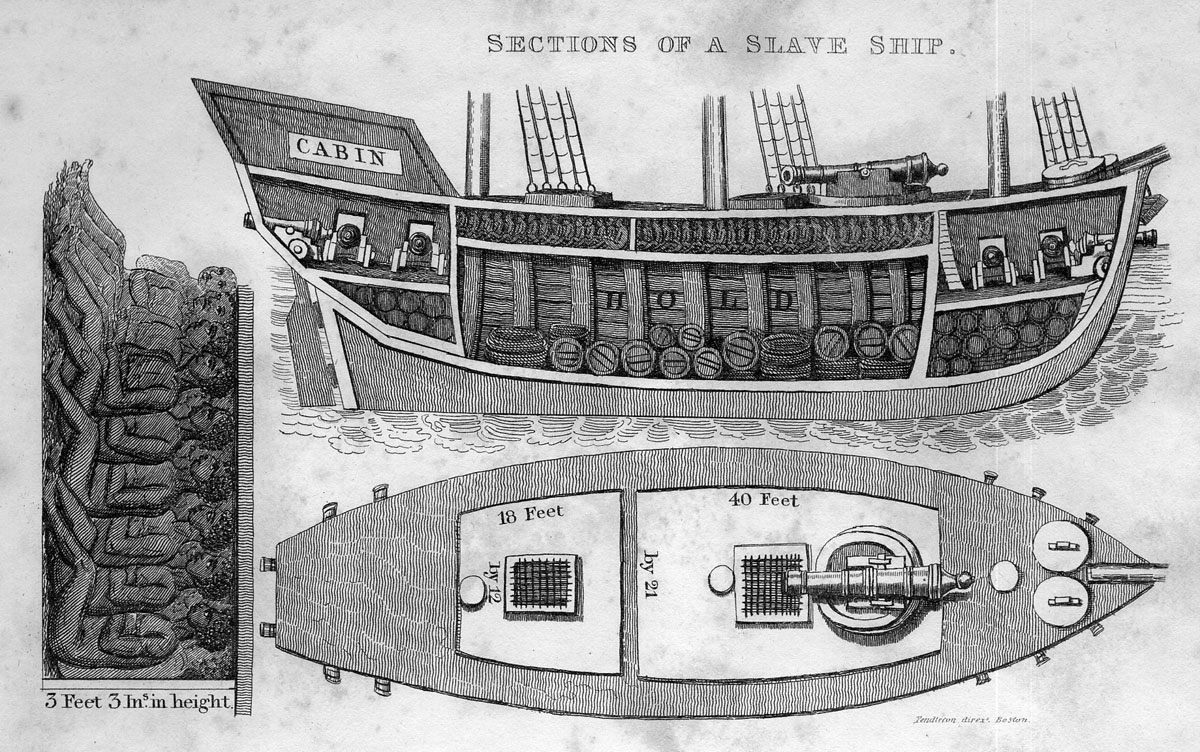 CrossSection of Slave Ship, the middle passage