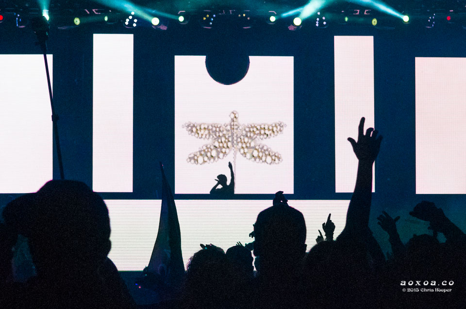 grandtheft aoxoa euphoria music festival