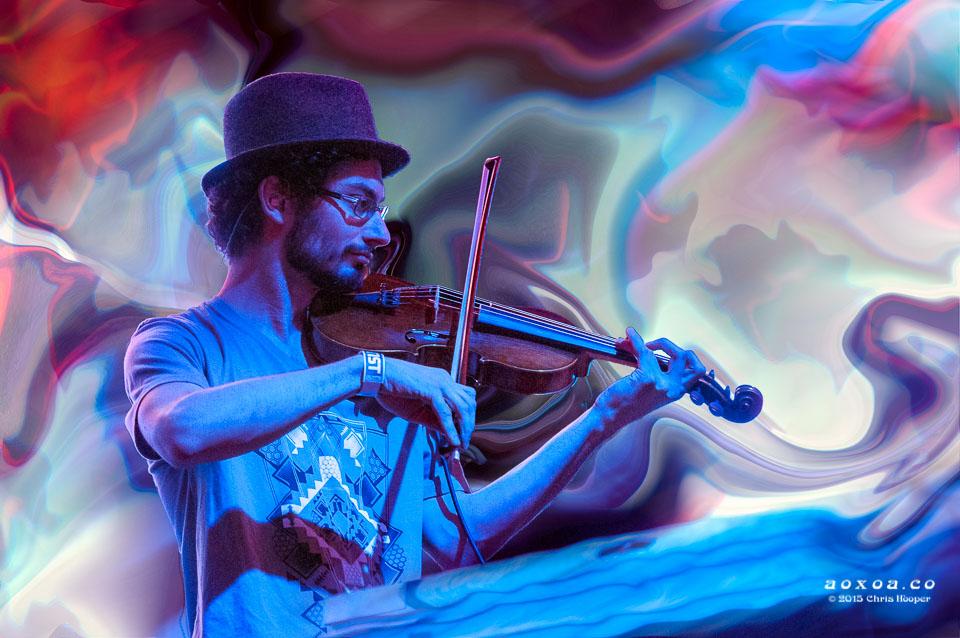 ilya Goldberg violin emancipator ensemble aoxoa